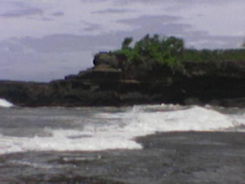 laut karang